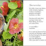 Mit dir im Herzen - Gedichte für Sternenmütter (Leseprobe)
