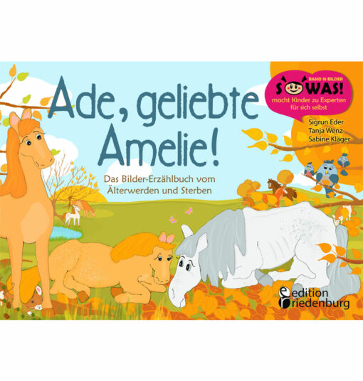 Ade, geliebte Amelie! (Cover)