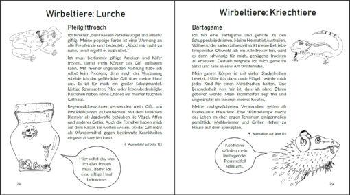 Ausmalspaß + Wissen: Fantatiere. Malbuch ab 6 Jahre. SOWAS!-Reihe (Innenansicht)