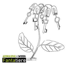 Ausmalspaß + Wissen: Fantatiere. Pflanzen: Schlüsselblume