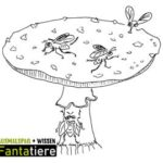 Ausmalspaß + Wissen: Fantatiere. Pilze: Fliegenpilz