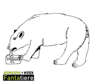 Ausmalspaß + Wissen: Fantatiere. Säugetiere: Eisbär