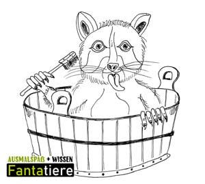 Ausmalspaß + Wissen: Fantatiere. Säugetiere: Waschbär