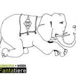 Ausmalspaß + Wissen: Fantatiere. Säugetiere: Zirkuselefant
