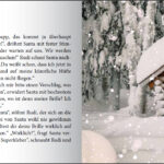 Santa kommt sicher! Coronaschutz Adventskalender zum Mitmachen für die ganze Familie (Innenansicht)